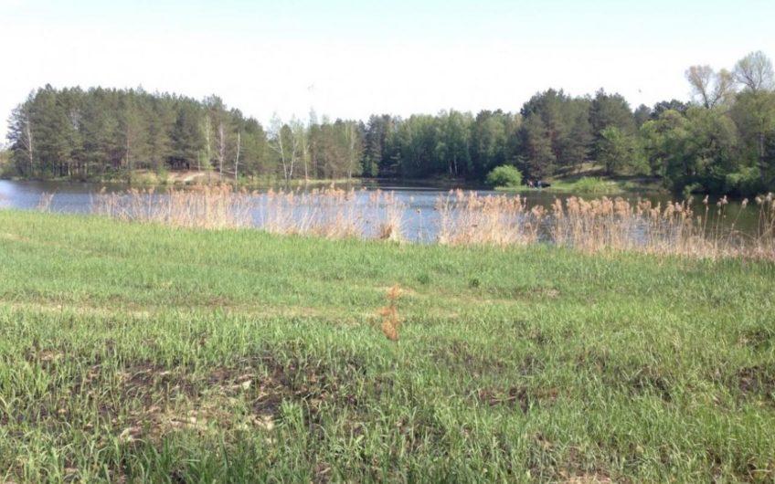 Продажа великолепного озера! с. Креничи, Обуховский район