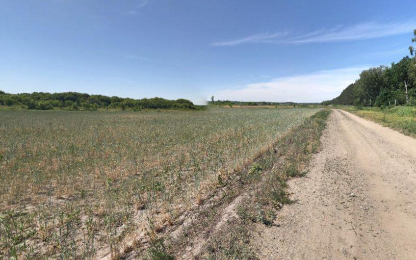 Продажа земли возле заповедной зоны / c. Мощун
